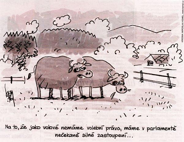 Volební_právo